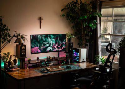 cichlid_visuals' Setup